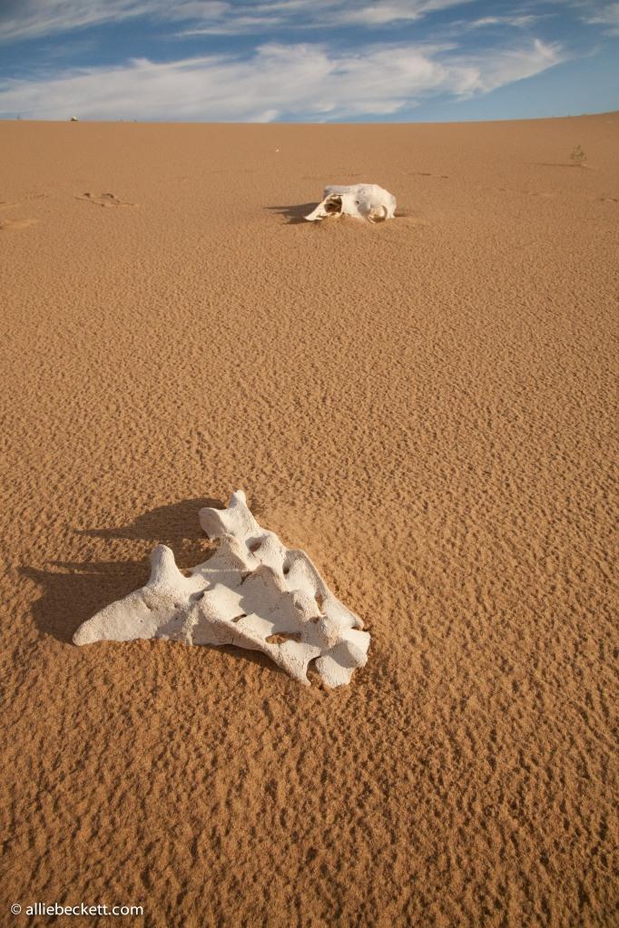 072812_gobi_sand_dunes_9038