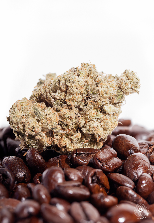 koffee1